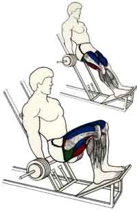 exercices de musculations pour les jambes Squat barre derrire les jambes