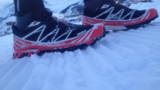 Salomon Softground neige