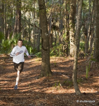 coureur foret