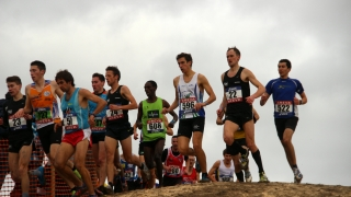 championnat de France de cross 2015