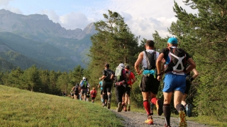 Ubaye trail Salomon 2015